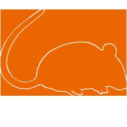 icono roedor